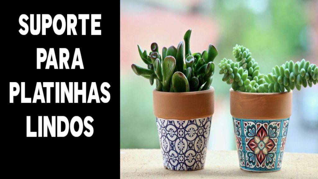 Plantinha para sua casa ficar linda