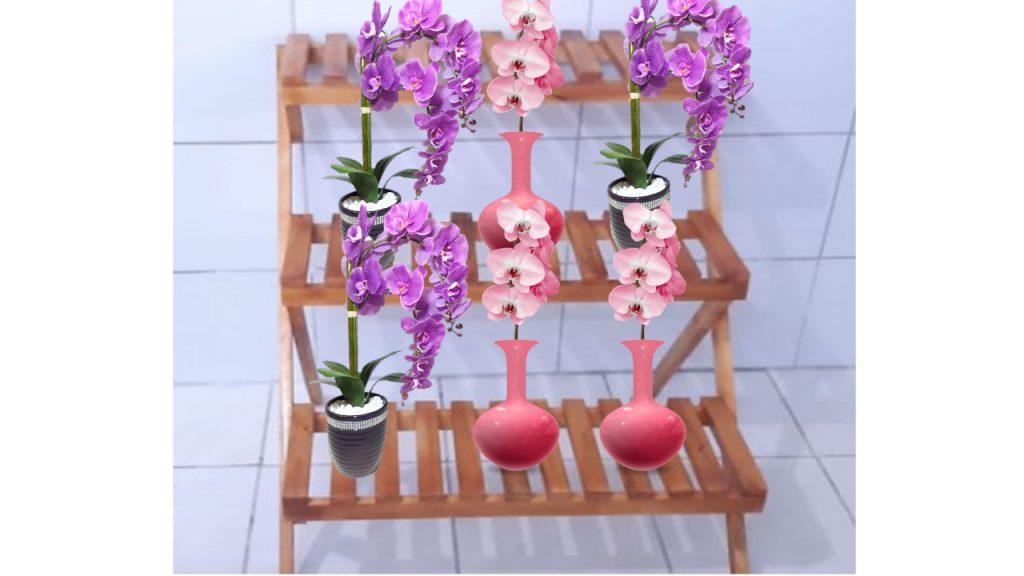 Suporte para orquídeas para sua coleção